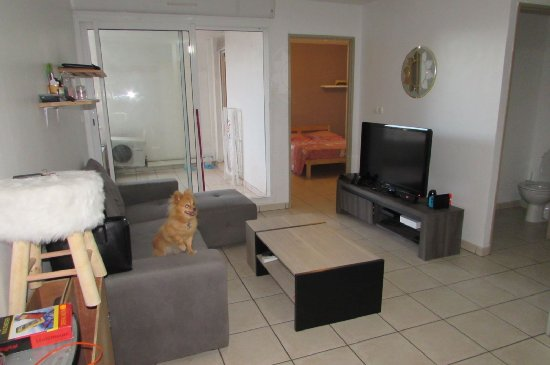 vente appartement STE CLOTILDE 2 pieces, 33m